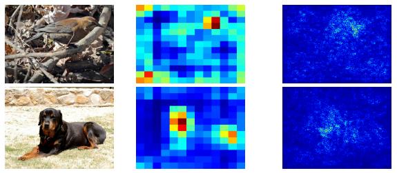Como otra Red Neuronal representa las imágenes de un pájaro y de un perro. Nuevamente, el resultado no tiene sentido visual para un ser humano. De Simon y Rodner,