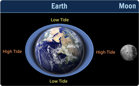 Imagen (muy exagerada) de la deformación de la Tierra debido al movimiento de la Luna. Las zonas donde el bulbo es mayor tendrán marea alta, y las zonas más planas tendrán marea baja. Estas zonas van cambiando cíclicamente, con la rotación de la Tierra y de la Luna. Imagen vía Ms. A. Science.